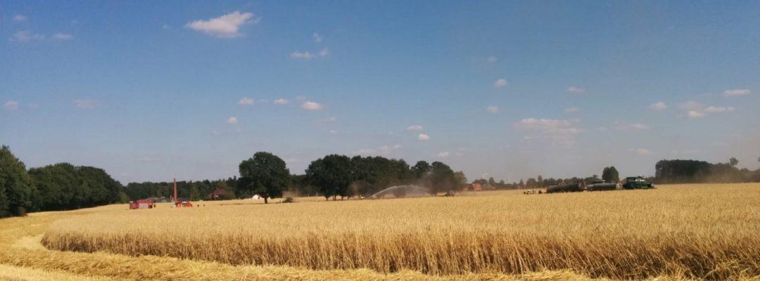 Feldbrand in Maasen